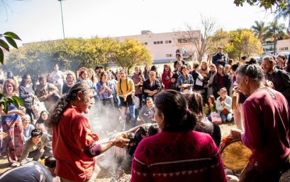 Webinario: Políticas y proyectos de inclusión e interculturalidad en universidades