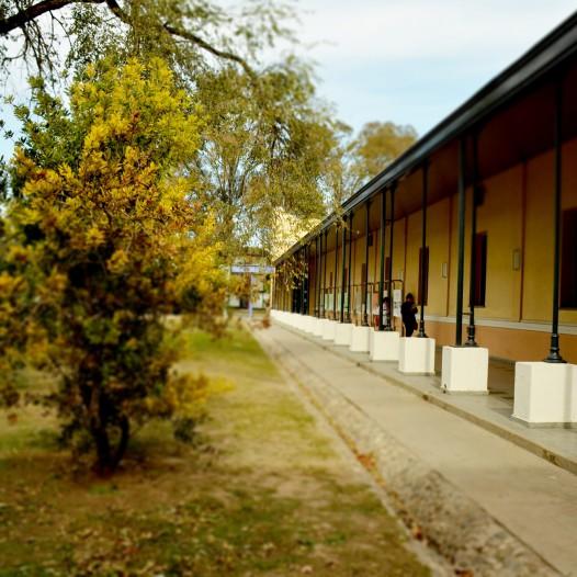 Convocatria de horas de Espacios Curriculares de Módulos Horarios de Nivel Universitario