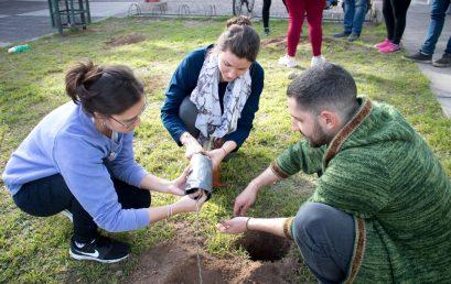 Se plantaron nuevos árboles en la UPC