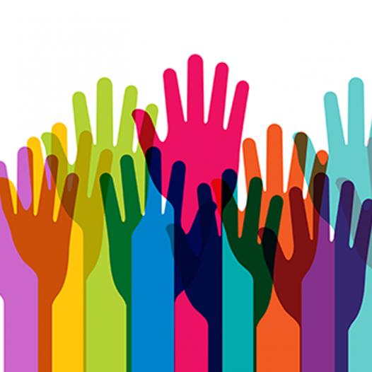 Convocatoria para la segunda Campaña para la Erradicación del Racismo en la Educación